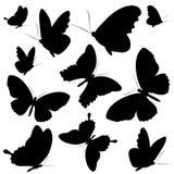 Zwarte die vlinder, op een wit wordt geïsoleerd Stock Foto
