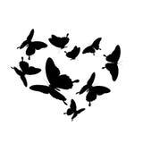 Zwarte die vlinder, op een wit wordt geïsoleerd Stock Fotografie