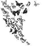 Zwarte die vlinder, op een wit wordt geïsoleerd Royalty-vrije Stock Foto's