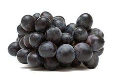 Zwarte druiven Stock Afbeelding