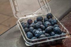 Zwarte druiven in een plastic doos royalty-vrije stock afbeeldingen