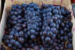 Zwarte druiven in houten dozen Royalty-vrije Stock Afbeelding