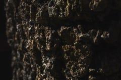 Zwarte en bruine metselwerkachtergrond Royalty-vrije Stock Afbeeldingen