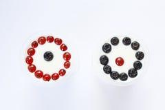 Zwarte en rode bessen Stock Afbeelding
