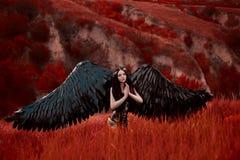 Zwarte engel Mooi meisje-demon royalty-vrije stock foto's