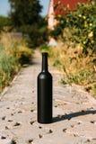 Zwarte fles op de weg van de tegels, het dorp, landelijk alcoholisme, dronkenschap alcoholische ziekte wijn natuurlijke drank Wij stock fotografie