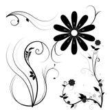 Zwarte geïllustreerdel bloemen Stock Afbeeldingen