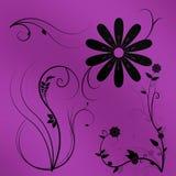 Zwarte gekleurde bloemen en installaties Stock Afbeelding