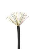 Zwarte gestripte kabel met multicolored elektro geïsoleerde draden Royalty-vrije Stock Foto