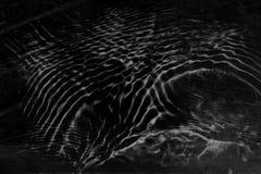 Zwarte grijze waterspiegelachtergrond in grungestijl Abstract DA royalty-vrije stock foto