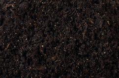 Zwarte grond dichte omhooggaand Royalty-vrije Stock Foto's