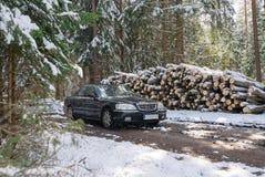 Zwarte grote auto in de bos, zonnige dag van de de wintersneeuw stock afbeelding