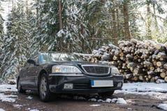 Zwarte grote auto in de bos, zonnige dag van de de wintersneeuw stock foto's