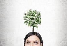 Zwarte haired onderneemster, dollarboom Stock Afbeelding