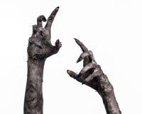 Zwarte hand van dood, volkomen het lopen, zombiethema, Halloween-thema, zombiehanden, witte achtergrond, brijhanden Stock Afbeeldingen
