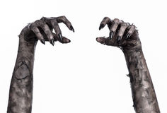 Zwarte hand van dood, volkomen het lopen, zombiethema, Halloween-thema, zombiehanden, witte achtergrond, brijhanden Royalty-vrije Stock Foto