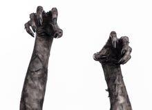 Zwarte hand van dood, volkomen het lopen, zombiethema, Halloween-thema, zombiehanden, witte achtergrond, brijhanden Stock Foto's