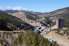 Zwarte Havik Colorado Royalty-vrije Stock Afbeelding