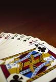 Zwarte hefboom Royalty-vrije Stock Foto's