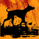 Zwarte Hond Grunge Royalty-vrije Stock Foto