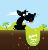 Zwarte hond met beenderen Stock Foto's