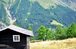 Zwarte houten cabine royalty-vrije stock foto's