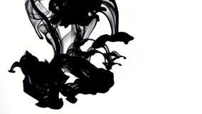 Zwarte inktvideo met 4k resolutie stock video