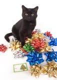 Zwarte kat en Kerstmisbogen Stock Fotografie