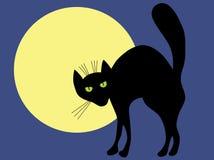 Zwarte kat en maan. Stock Foto