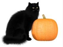 Zwarte Kat en Pompoen Stock Fotografie