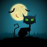 Zwarte Kat in Halloween-Nacht Stock Afbeelding