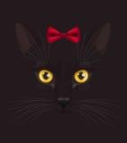 Zwarte kat met boog Stock Afbeelding