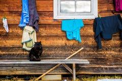 Zwarte kat op de bank dichtbij het dorpshuis royalty-vrije stock fotografie