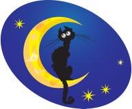 Zwarte kat op maan Royalty-vrije Stock Foto