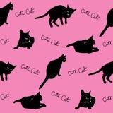 Zwarte katten Stock Afbeeldingen