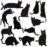 Zwarte kattensilhouetten Stock Afbeeldingen