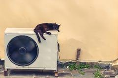Zwarte kattenslaap op een witte airconditioner in de hitte in de straat van Griekenland royalty-vrije stock fotografie