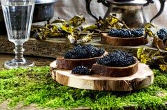 Zwarte kaviaar en wodka Uitstekende stijl Royalty-vrije Stock Foto's