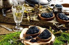 Zwarte kaviaar en wodka Uitstekende stijl Stock Fotografie