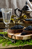 Zwarte kaviaar en wodka Uitstekende stijl Stock Foto