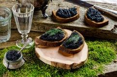 Zwarte kaviaar en wodka Uitstekende stijl Royalty-vrije Stock Foto