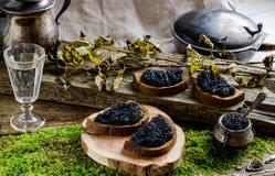 Zwarte kaviaar en wodka Uitstekende stijl Royalty-vrije Stock Afbeelding