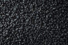 Zwarte komijn Royalty-vrije Stock Afbeeldingen