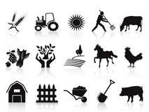 Zwarte landbouwbedrijf en landbouw geplaatste pictogrammen Stock Fotografie