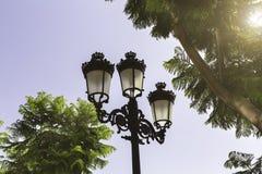 Zwarte lantaarns, bomen op de achtergrond van blauwe hemel royalty-vrije stock afbeeldingen