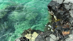 Zwarte Lava Rock And Light Blue-Overzeese Golven met Krab stock video
