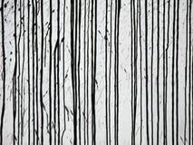 Zwarte lijnen Royalty-vrije Stock Afbeeldingen