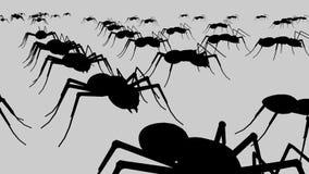 Zwarte mieren royalty-vrije illustratie