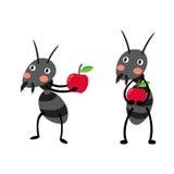 Zwarte mieren met het rode karakter van het appelenbeeldverhaal Stock Fotografie