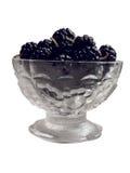 Zwarte moerbeibomen 1 Royalty-vrije Stock Afbeeldingen